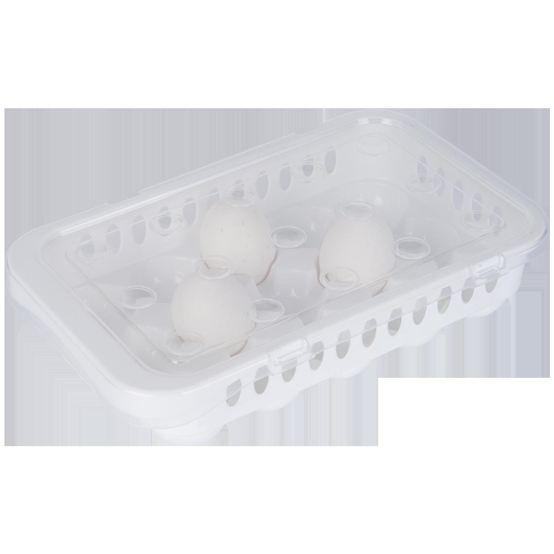 Steril Yumurta Saklama Kabı, 15li Yumurta Organizeri